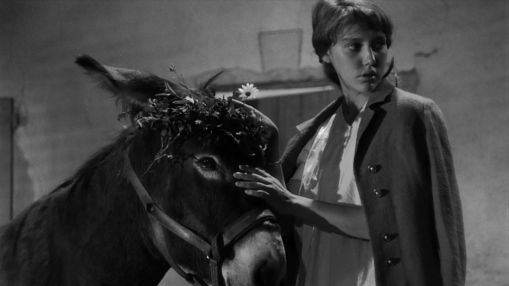Au Hasard Balthazar, de Robert Bresson. La película fundacional en la vida de Sebastián Múnera, el director de la película colombiana La torre.
