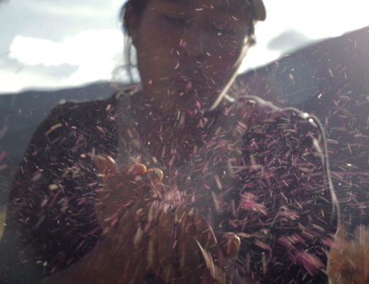 Sembradoras. Cine indígena