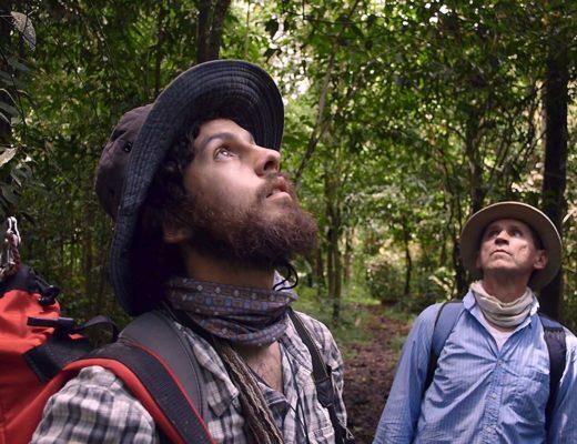 Homo Botanicusdirigida por Guillermo Quintero